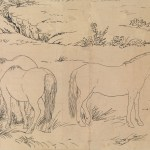 Giuseppe Castiglione One Hundred Horses China Qing Dynasty 1644 1911 The Metropolitan Museum Of Art