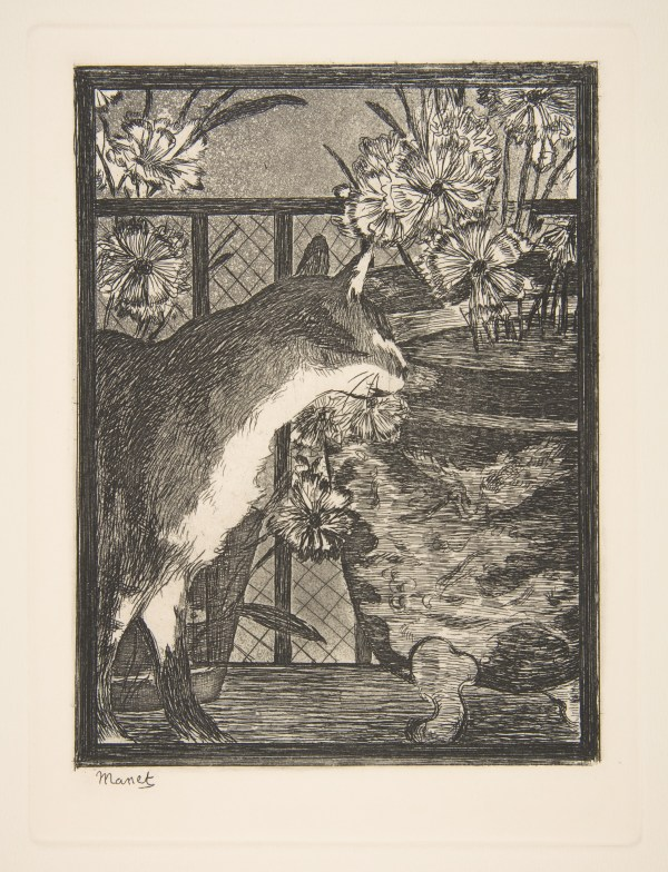 Edouard Manet Cat And Flowers Met