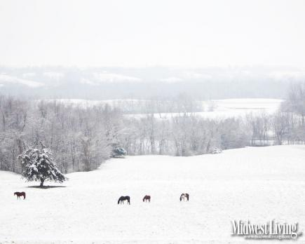 Free Desktop Wallpaper Falling Snow Decorate Your Desktop With Our Winter Photos Midwest Living