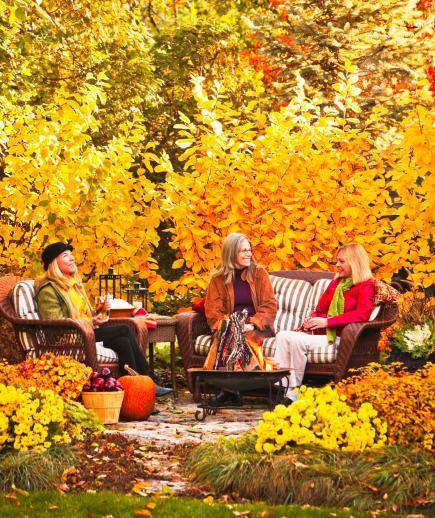 grow - fall garden