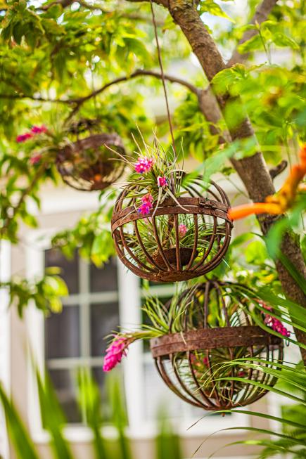 35 Beautiful Container Gardens Midwest Living