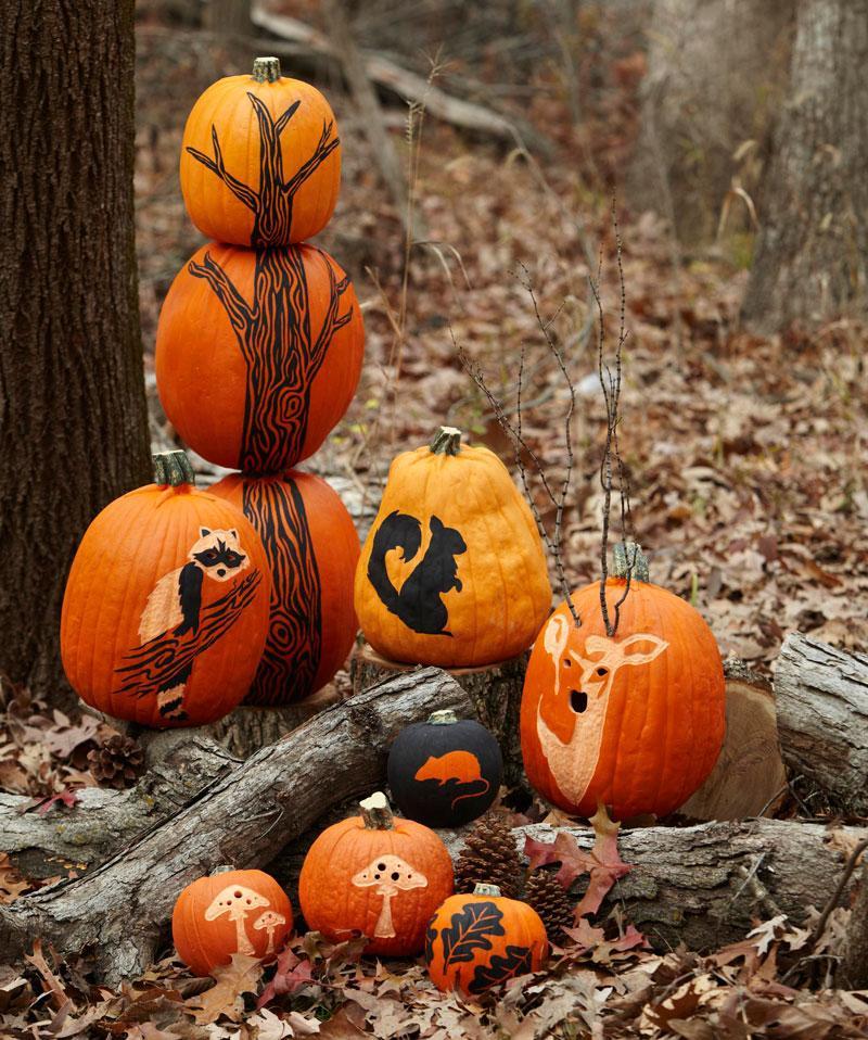Fall White Pumpkins Wallpaper How To Make A Pumpkin Tree Midwest Living