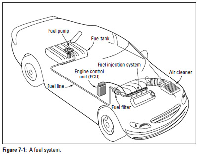 In Tank Electric Fuel Pumps, In, Free Engine Image For