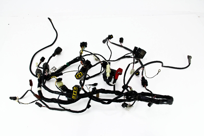 Kawasaki Wire Harness
