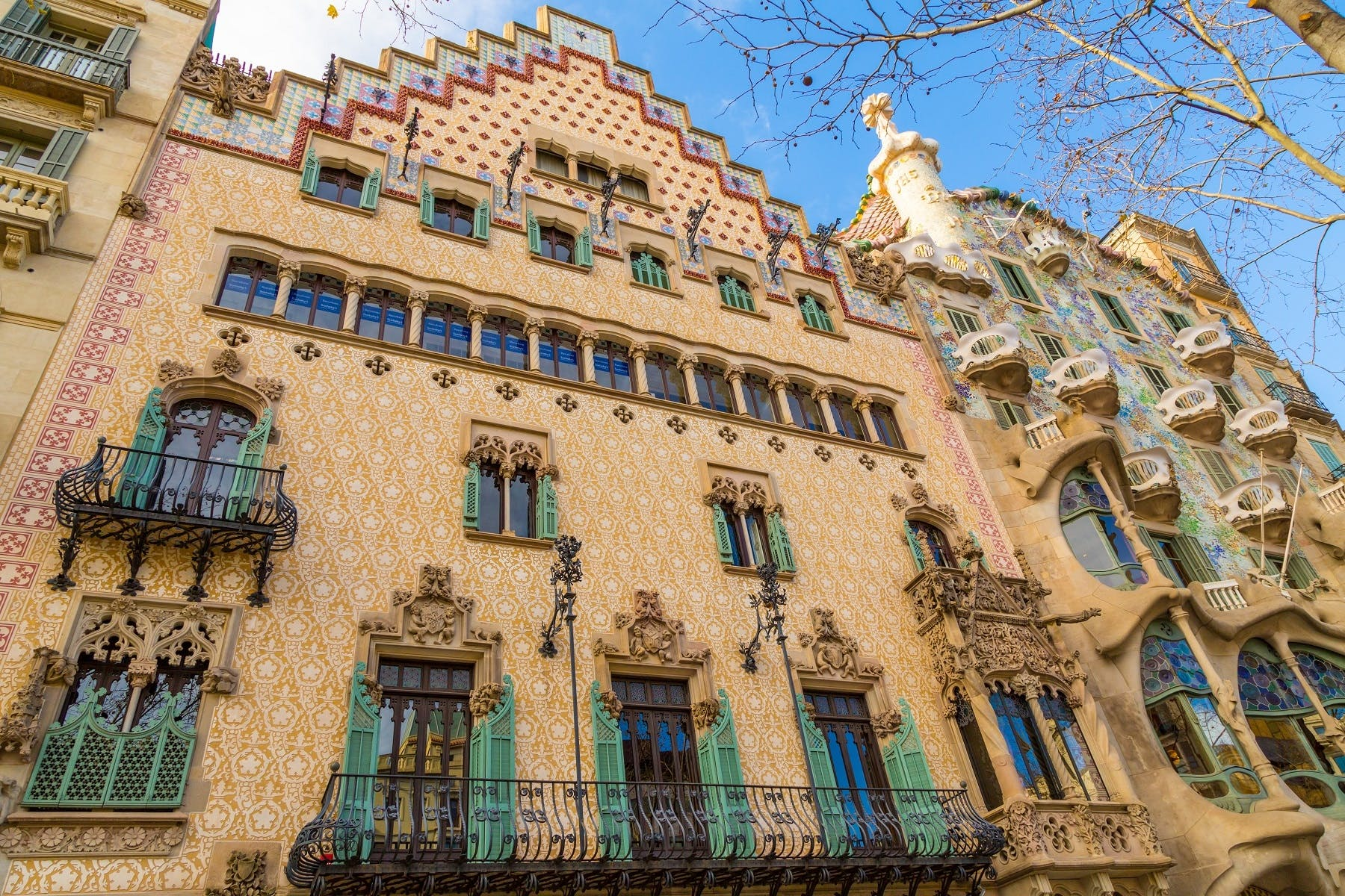 Casa Batll Tickets and Guided Tours in Barcelona  musement