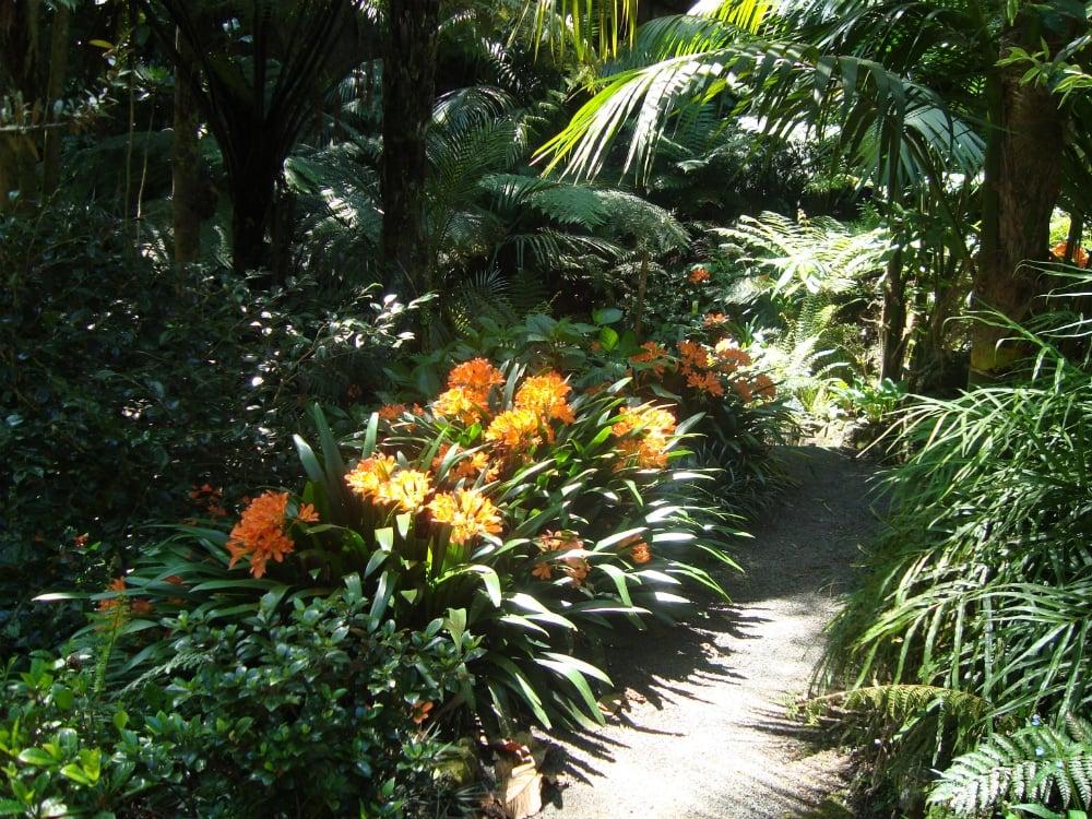 Eden Garden In Auckland My Guide Auckland