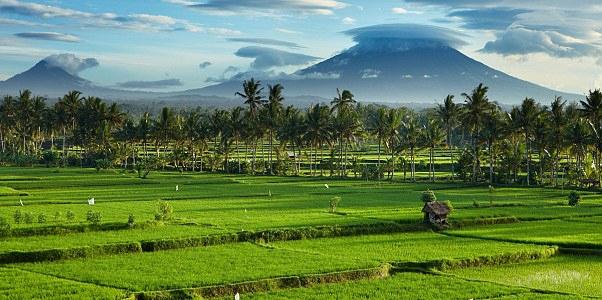 Central Bali South  The Plains