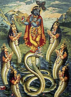 Amphibious and Reptilian Humans