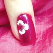 flower nail art blooms in brooklyn