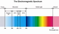 The Difference Between LED and UV Lamps - Technique ...