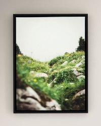 """""""Spring"""" Photography Print on Canvas Framed Wall Art ..."""