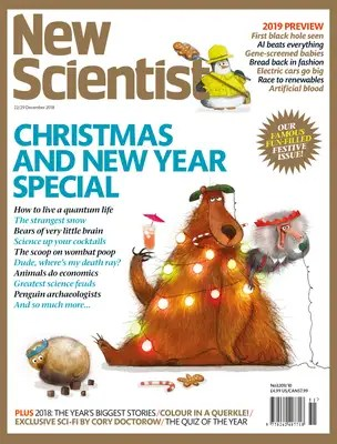 New Scientist issue 3209 cover