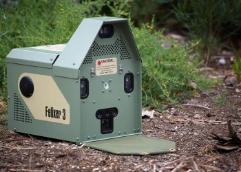 A laser-sighted toxic goo gun is killing feral cats in Australia