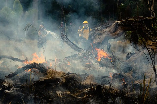 Members of the IBAMA forest fire brigade (named Prevfogo) fight burning in the Amazon area of rural settlement PDS Nova Fronteira, in the city of Novo Progresso, Para state, northern Brazil, this Tuesday, September 3rd. Since the end of August Prevfogo has been acting with the assistance of Brazilian Army military. Bolsonaro government budget cuts since January 2019 have severely affected brigades, which have been reduced in critical regions such as the Amazon. (Photo by Gustavo Basso/NurPhoto via Getty Images)