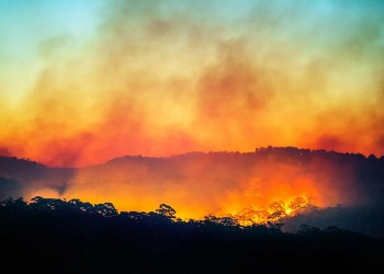 Australias fires may accelerate a jump in CO2 forecasted in 2020