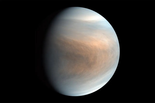 To understand signs of life on Venus we must do chemistry on Earth
