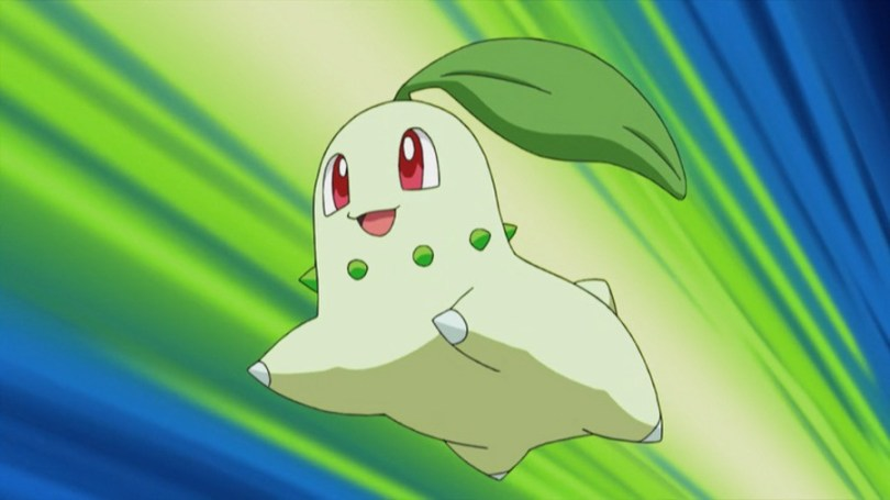 This is not Chicky. This is some lesser Chikorita, from the anime