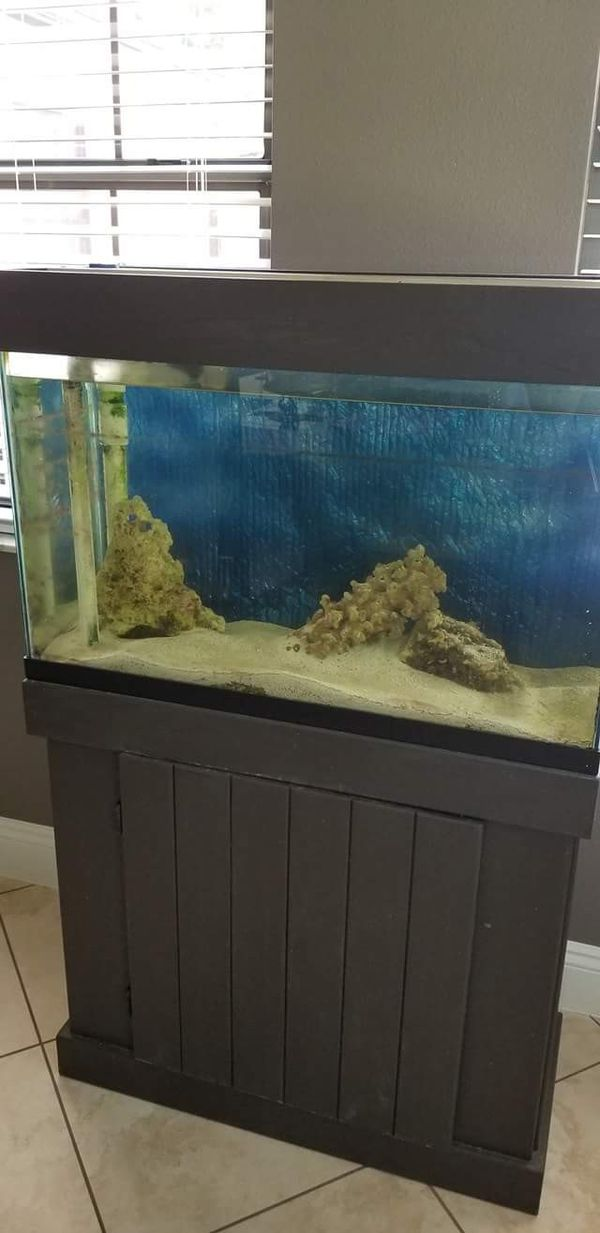 30 gallon tank with