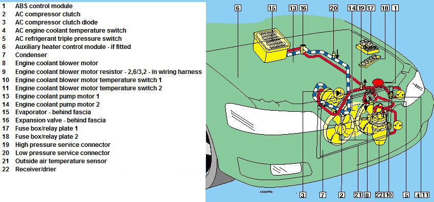 basic automobile wiring diagram labelled of human brain auto ac