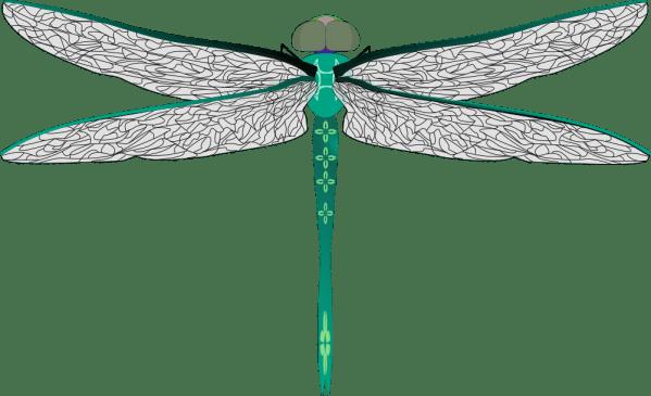 onlinelabels clip art - teal dragonfly
