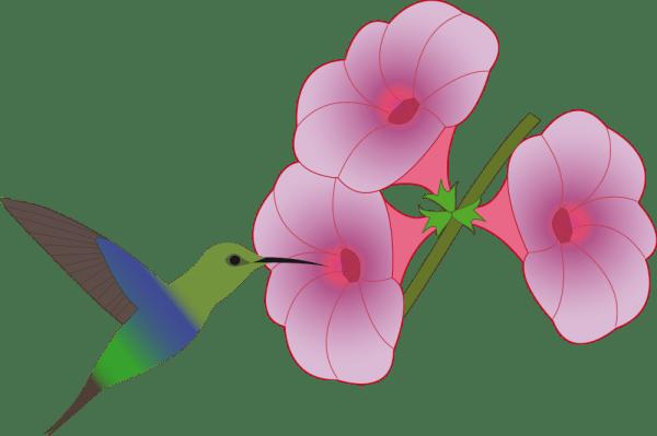 onlinelabels clip art - pretty