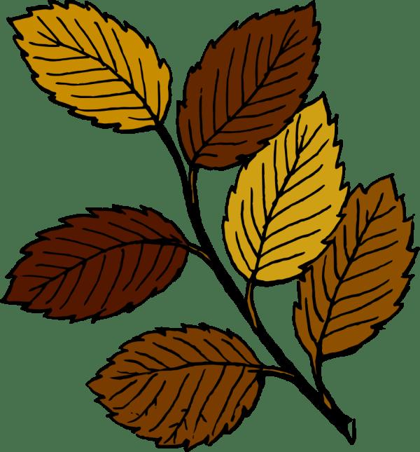 onlinelabels clip art - autumn