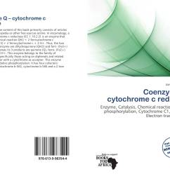 bookcover of coenzyme q cytochrome c reductase [ 2000 x 1457 Pixel ]