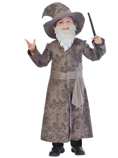 Wise Wizard