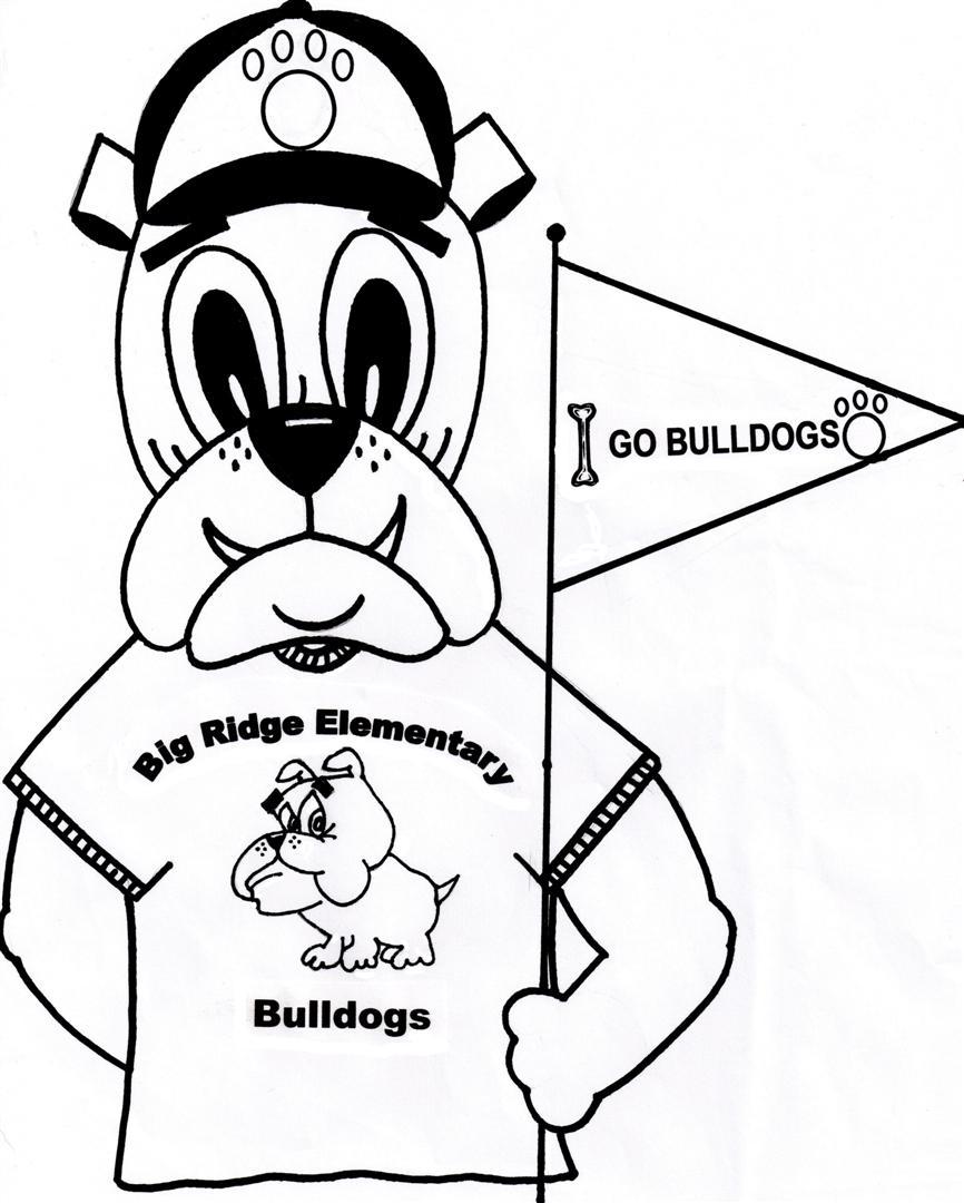 Big Ridge Elementary School: About The School