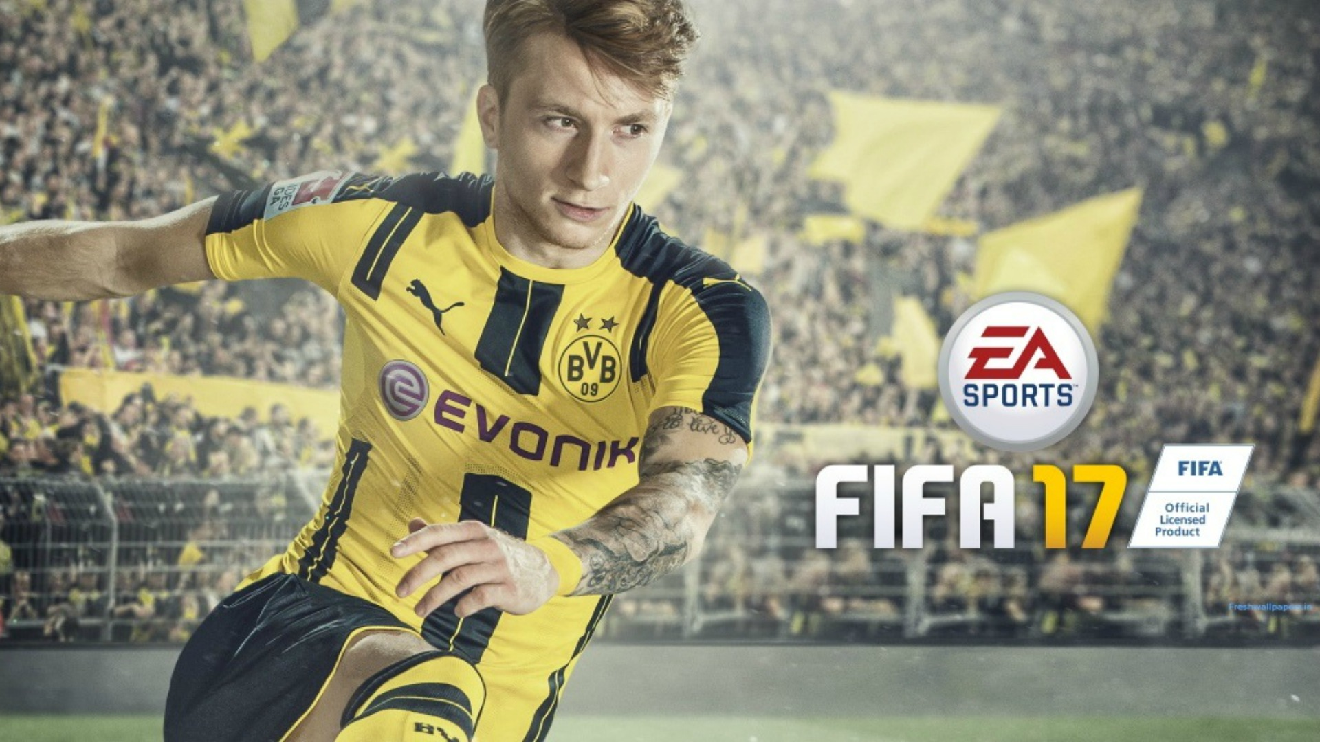 Image result for fifa 2017