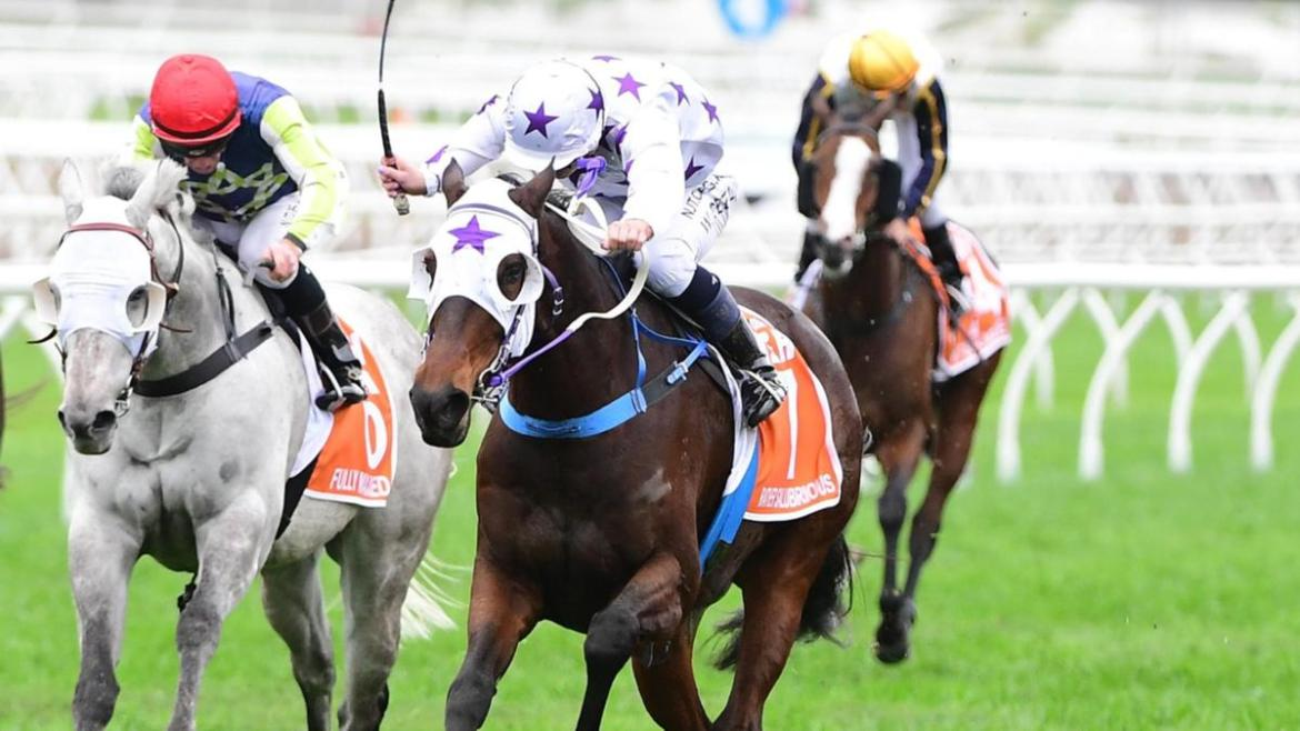 Wendy Peel rides Rather Salubrious to victory in the Battle of the Bush at Eagle Farm. Trackside Photography