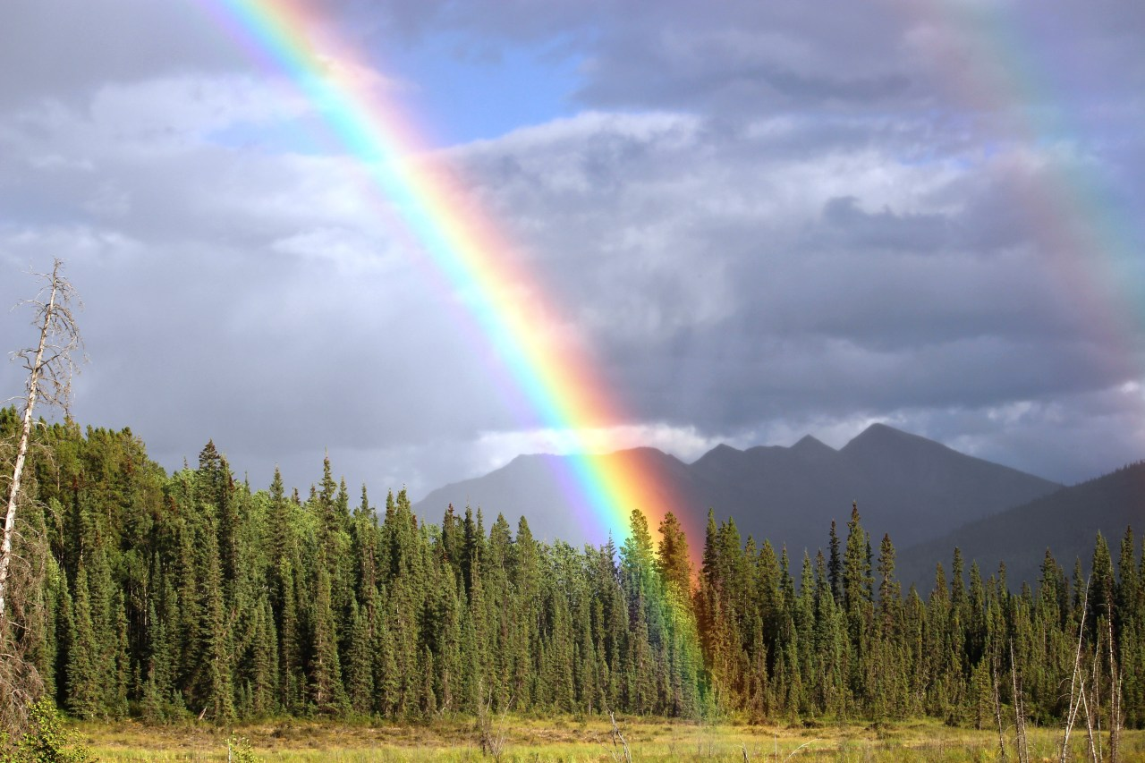 Related Images To Doble Rainbow Wallpaper Wallpaperfree To Use By Rita