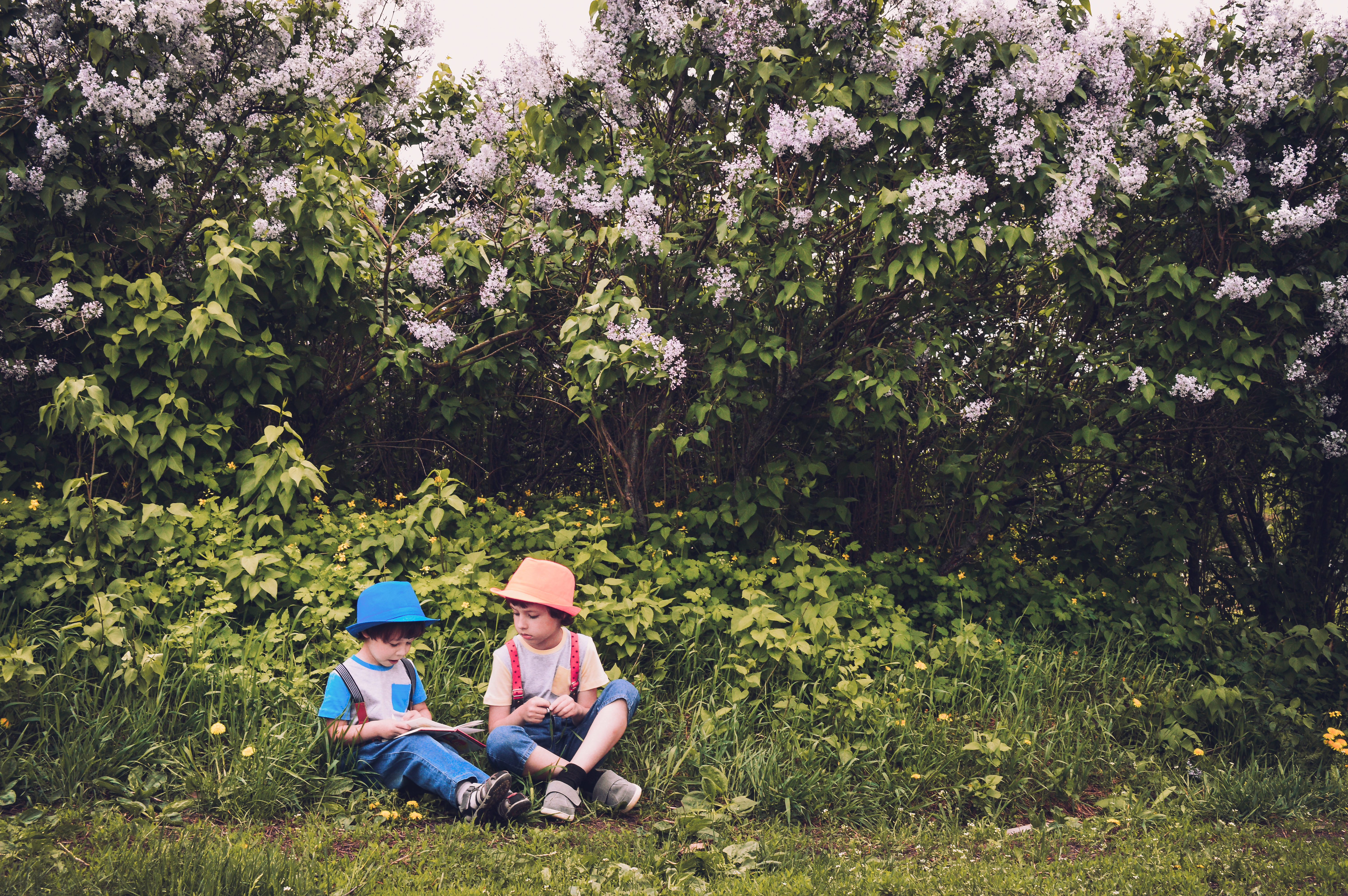 New Wallpaper Hd Boy And Girl Girl And Boy Sitting On Grass Field Surrounded By Trees