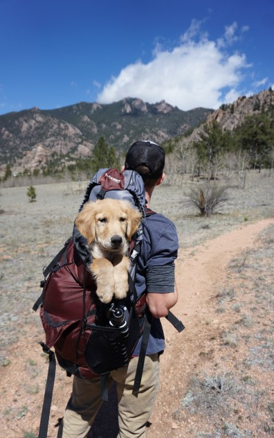 Man With Blue and Maroon Camping Bag