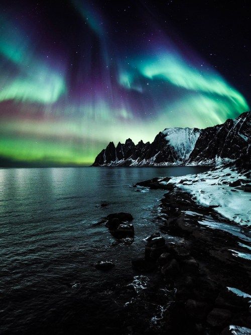 50 engaging aurora borealis