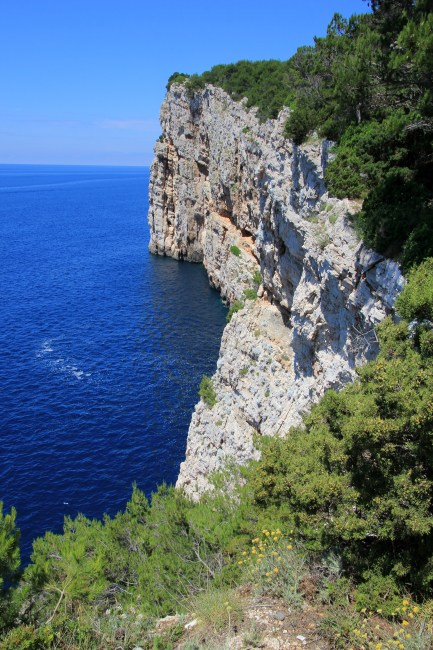 Blue Wallpaper Hd Download White Rock Cliff With Green Leaf Trees Near Blue Body Of
