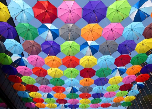 1000 interesting colorful photos