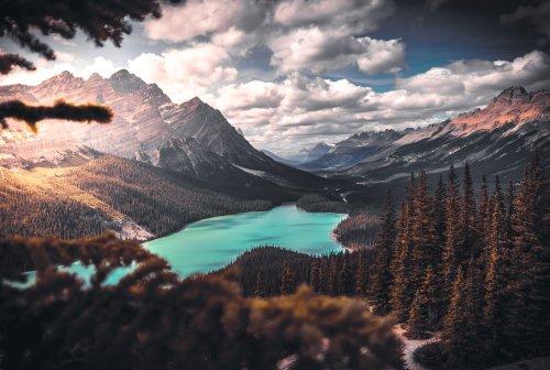 desktop wallpaper pexels free