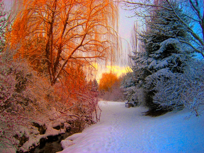 Late Fall Desktop Wallpaper Orange And Blue And White Snow Forest 183 Free Stock Photo