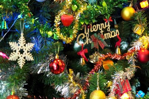 branch, celebration, christmas