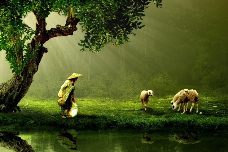 Woman and Sheep Beside Body of Water Photo