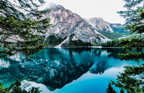 nature wallpapers pexels free
