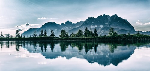 nature images pexels free