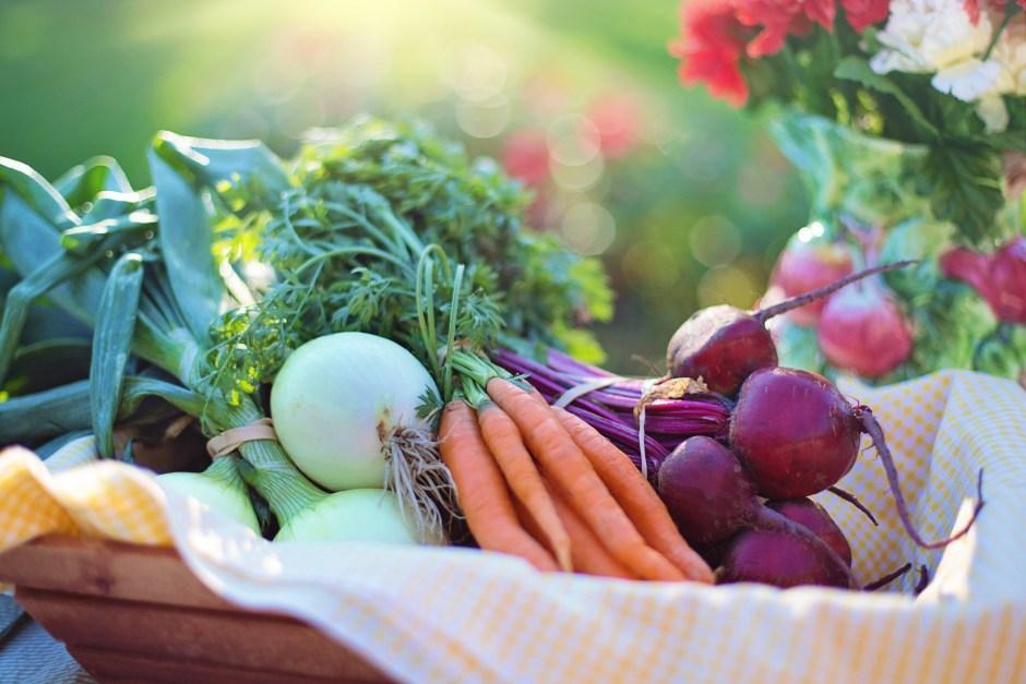 agriculture, basket, beets
