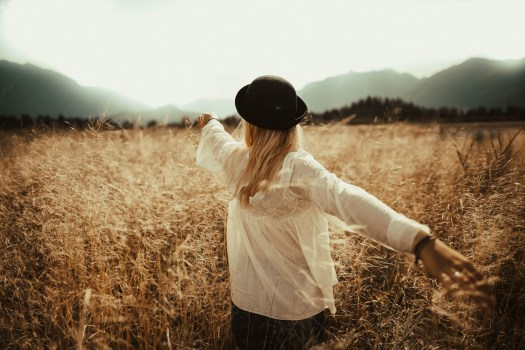 Free Fall Wallpapers Download Free Stock Photo Of Back View Blonde Hair Blur