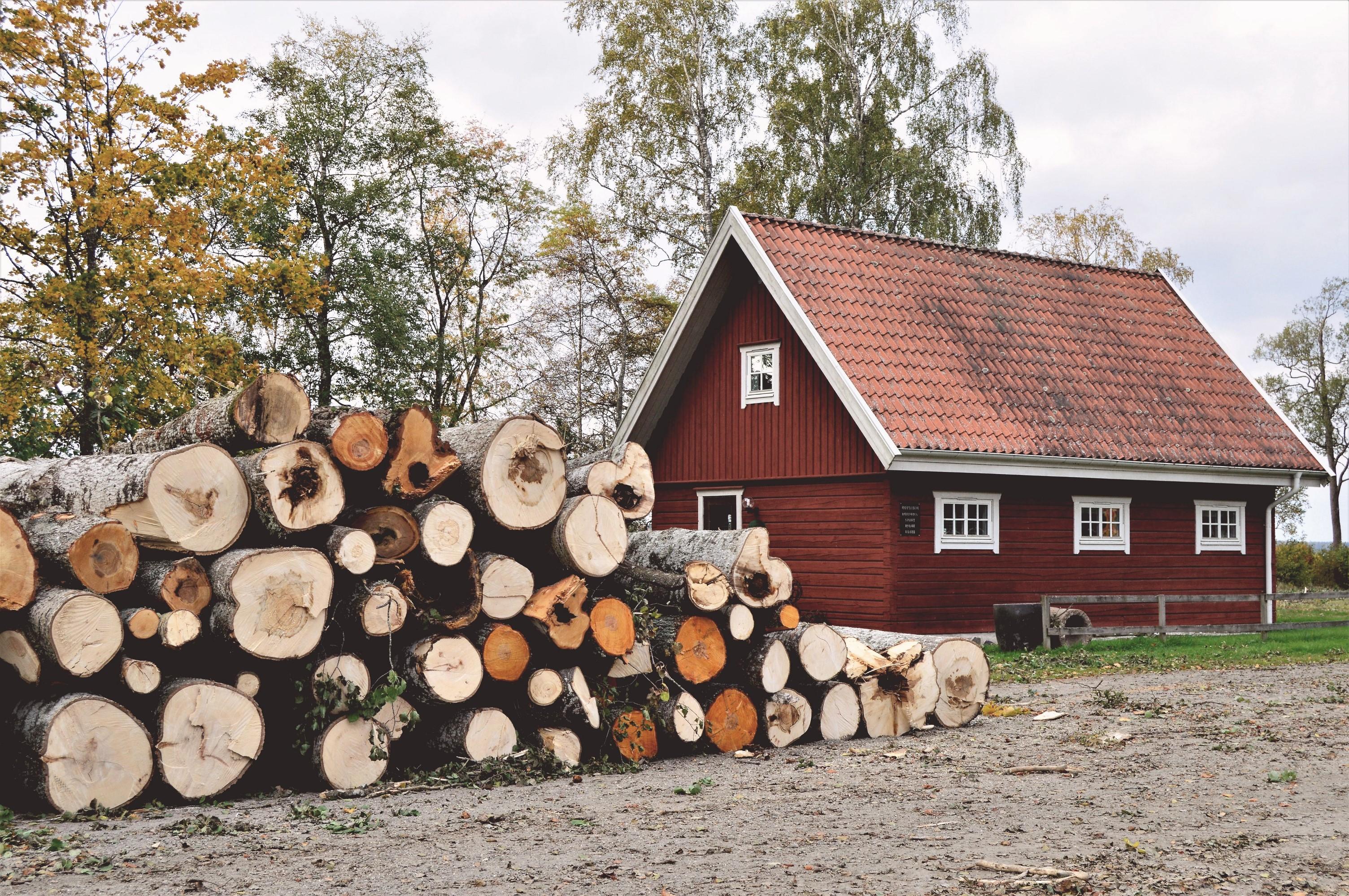 tree logs near barn