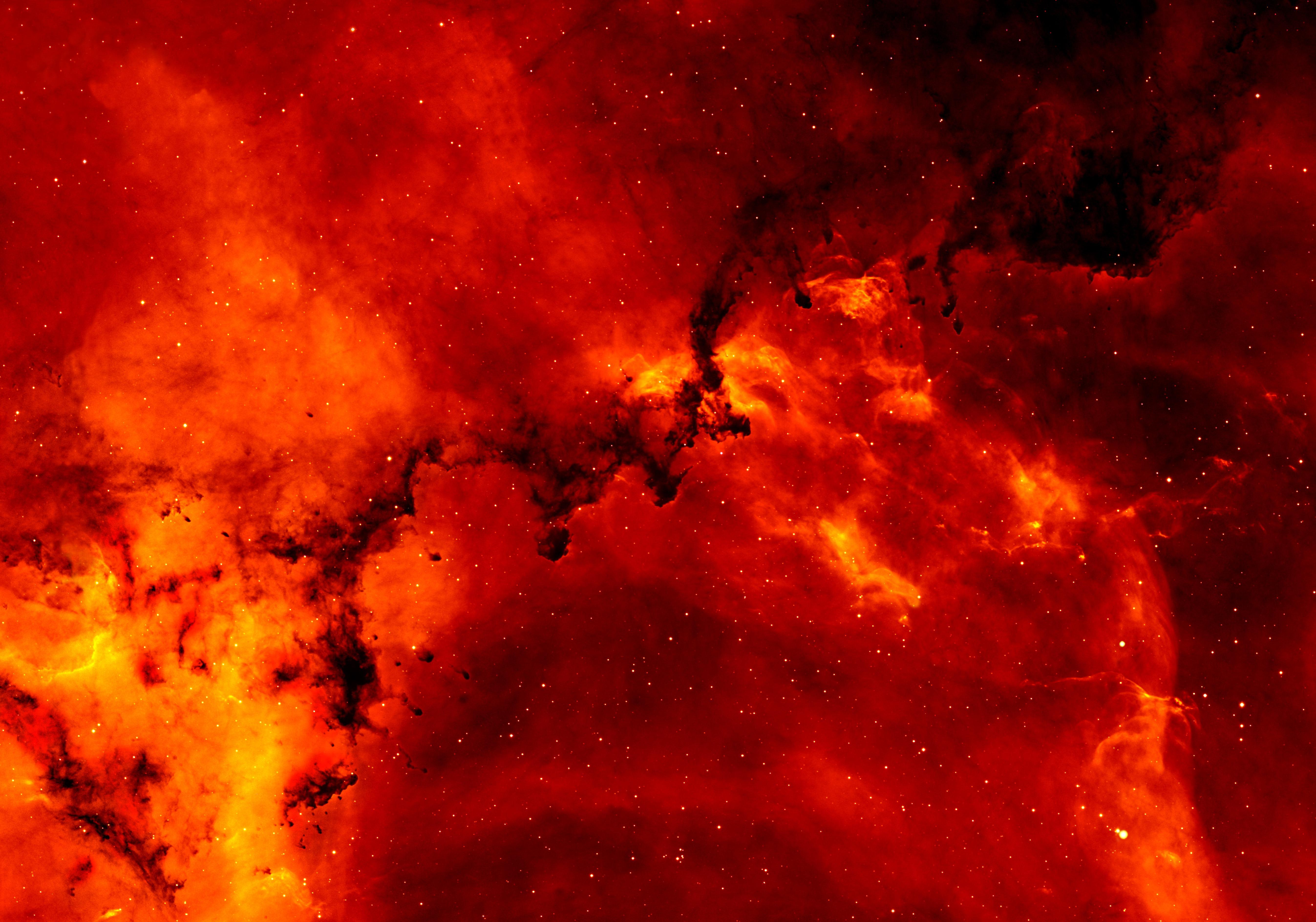 Red and Orange Solar Flare  Free Stock Photo