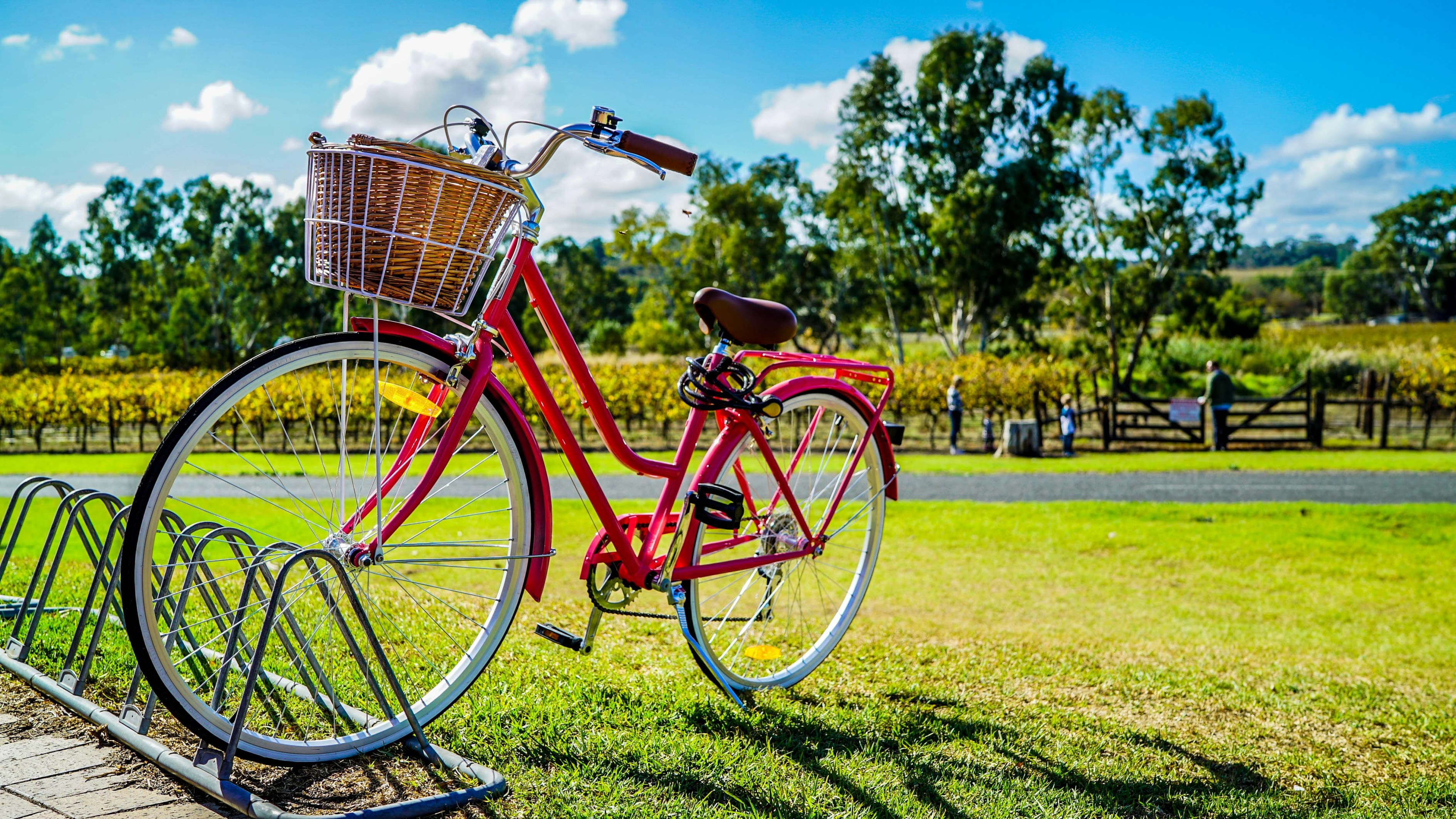 Red bicycle on the park