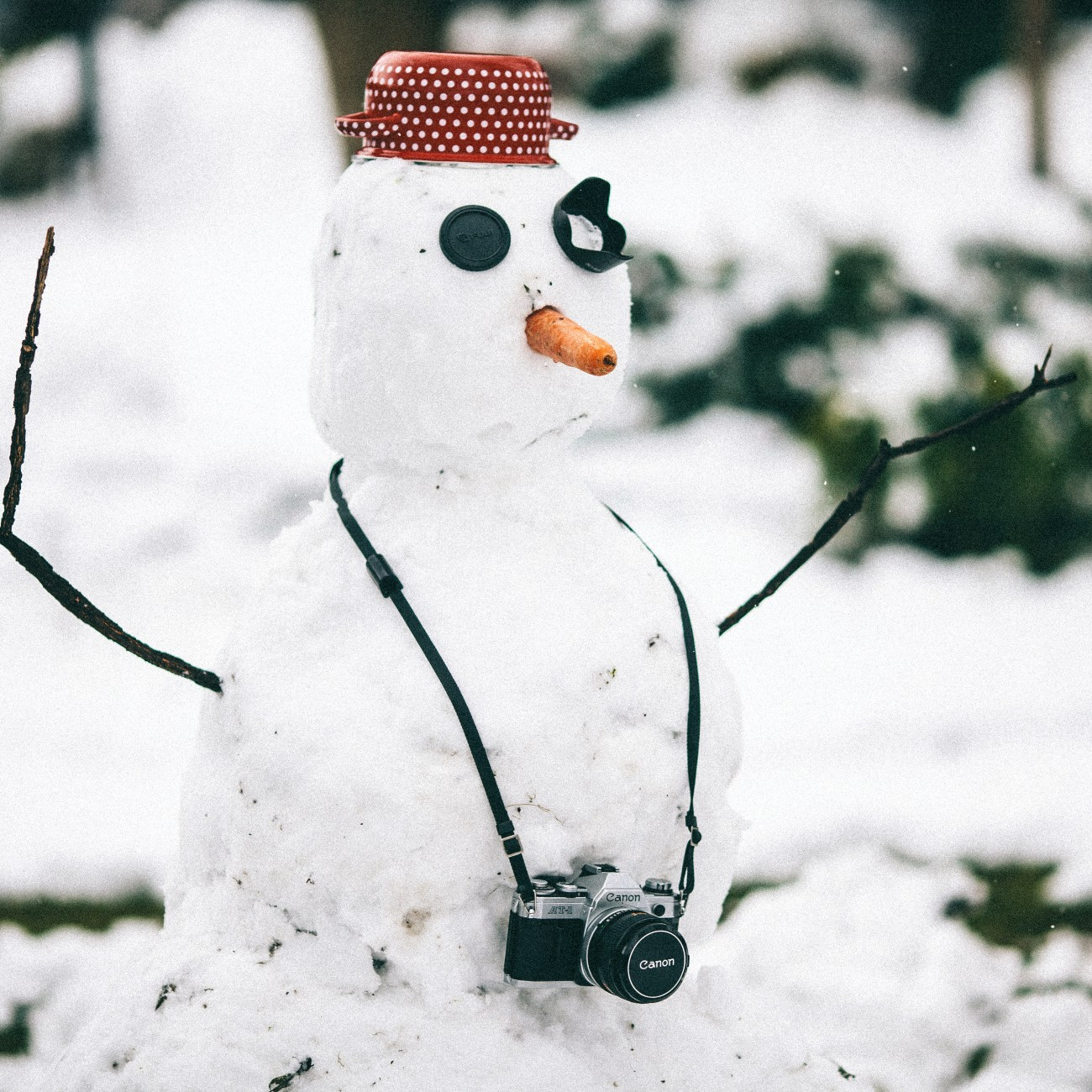 snowman with hat and camera