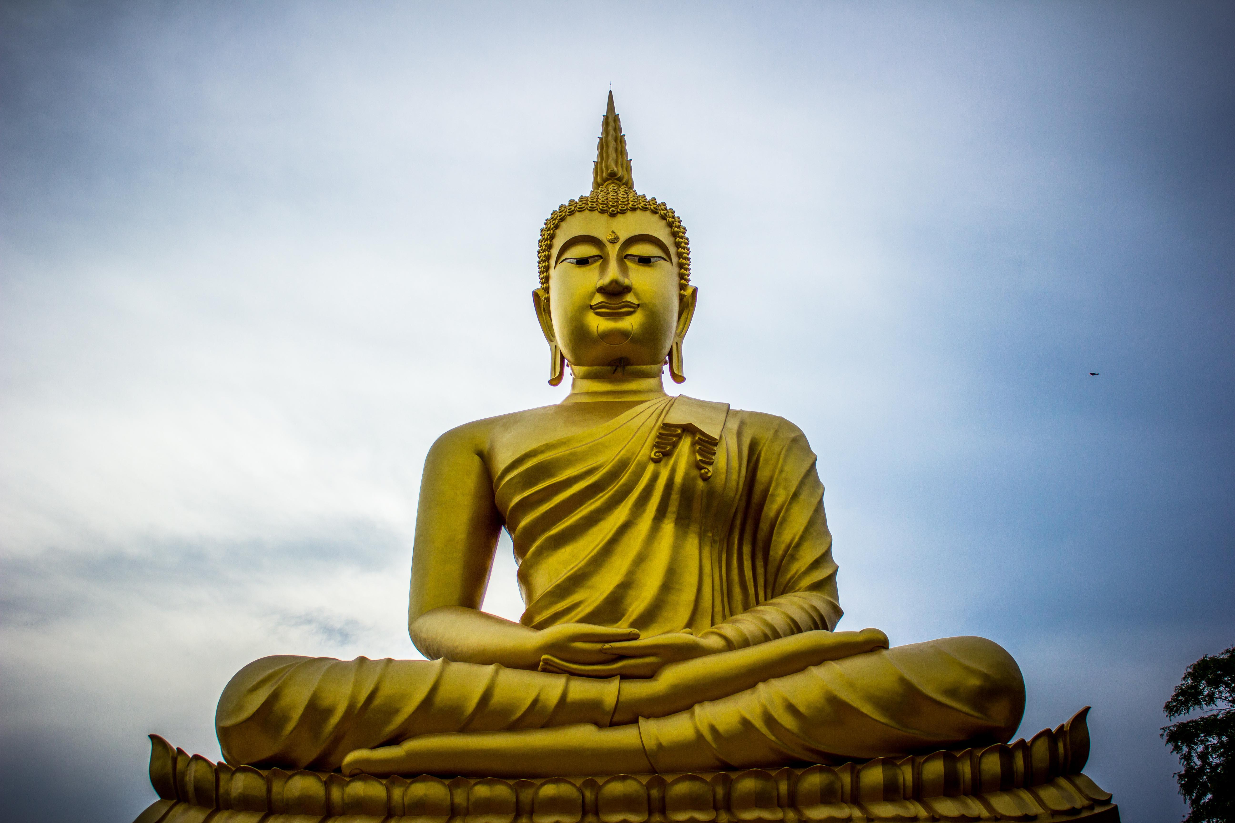 photo of golden gautama